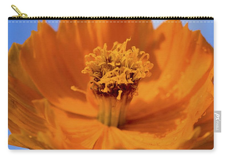Cosmos Carry-all Pouch featuring the photograph Pefect In Orange by Rich Franco