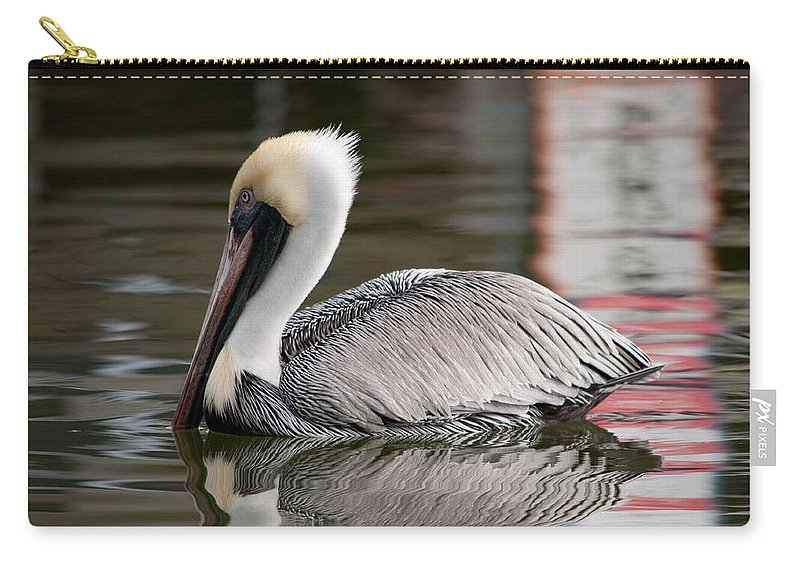 Pelican Carry-all Pouch featuring the photograph Pelican by Christine Stonebridge