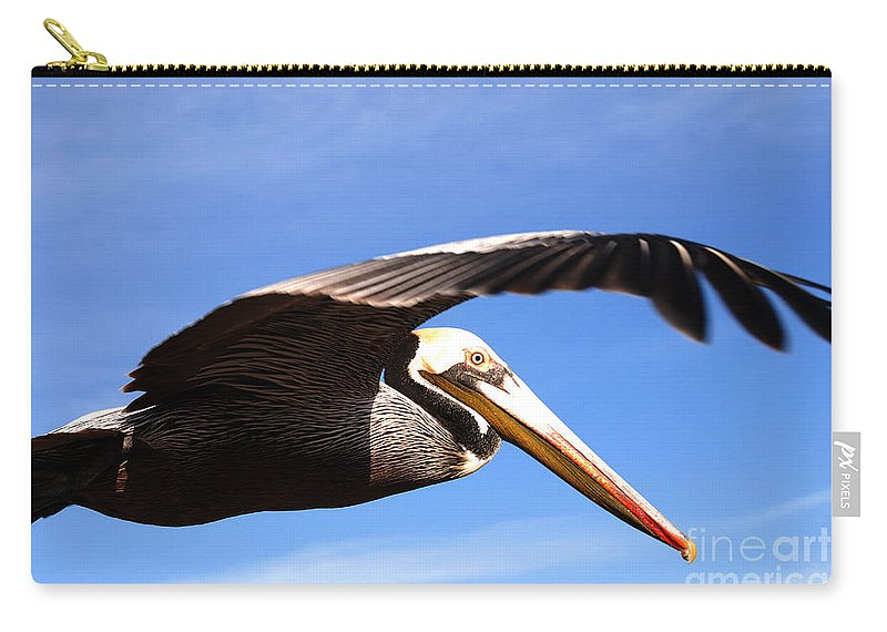 Pelican Carry-all Pouch featuring the photograph Pelican In Flight by Susanne Van Hulst