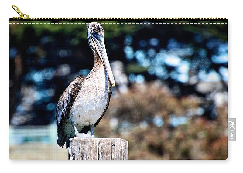 Pelican Carry-all Pouch featuring the photograph Pelican Perched by Eric Tressler