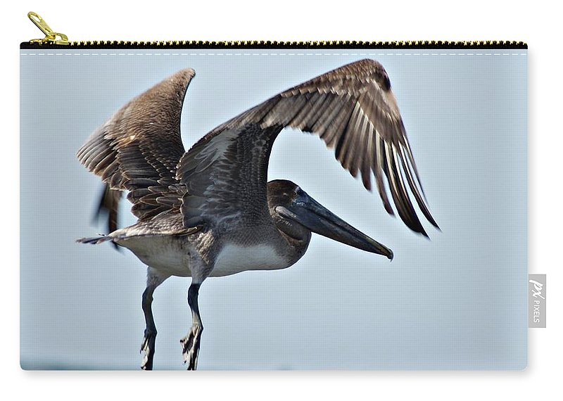 Pelican Carry-all Pouch featuring the photograph Pelican V by Joe Faherty