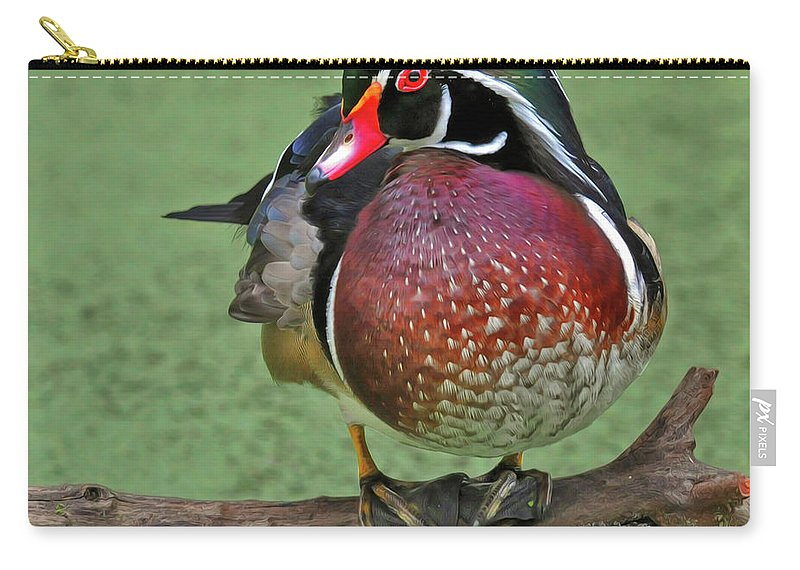 Wood Duck Carry-all Pouch featuring the photograph Perched Wood Duck by Dave Mills