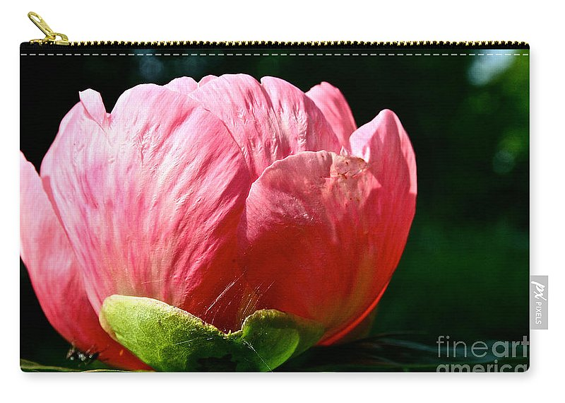 Plant Carry-all Pouch featuring the photograph Petals Up by Susan Herber