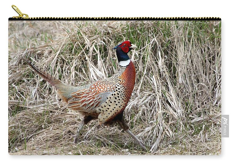 Rooster Carry-all Pouch featuring the photograph Pheasant Walking by Lori Tordsen
