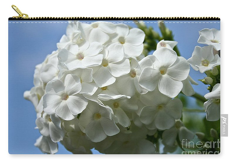 Plant Carry-all Pouch featuring the photograph Phlox Aka David by Susan Herber