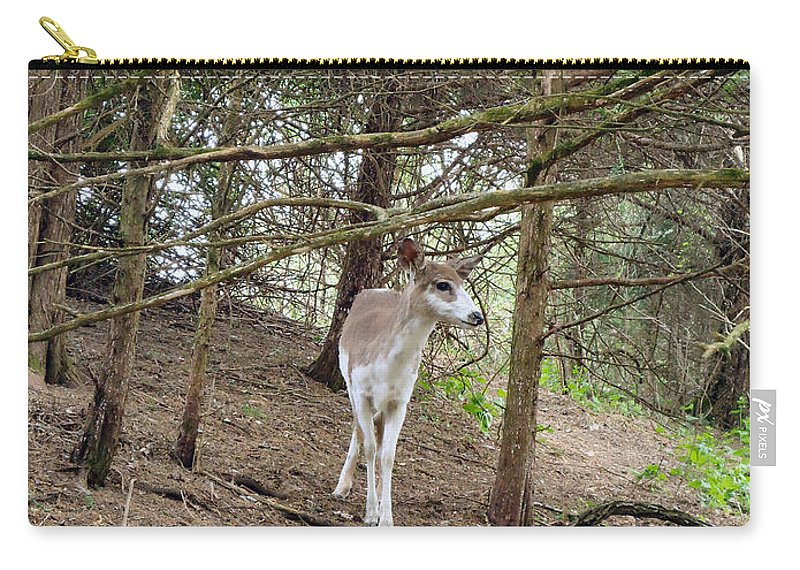 Deer Carry-all Pouch featuring the photograph Piebald by Art Dingo