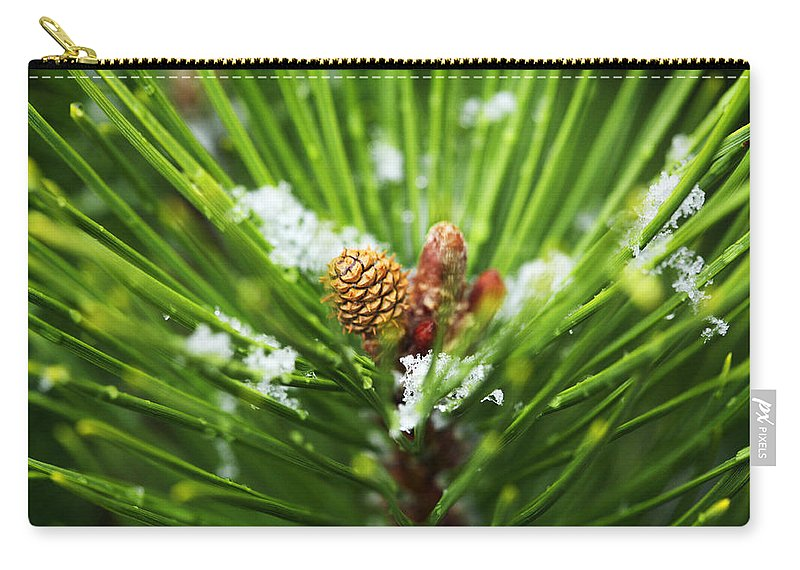 Pine Carry-all Pouch featuring the photograph Pine Cone Cloeup by Marilyn Hunt