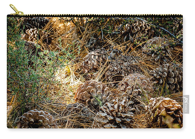 Pine Cones Carry-all Pouch featuring the photograph Pine Cones by Cathy Smith