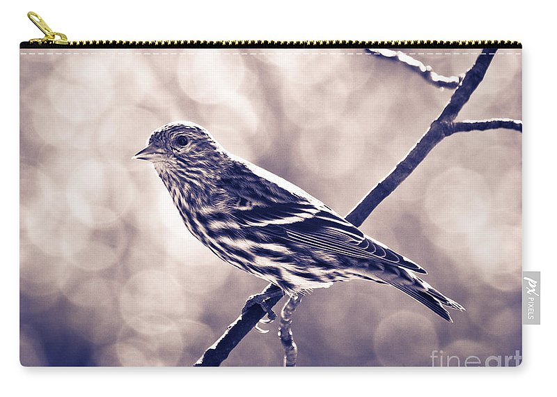 Bird Carry-all Pouch featuring the photograph Pine Siskin2 by Cheryl Baxter