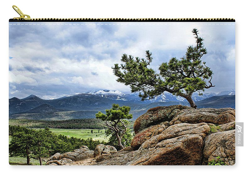 Pine Tree Carry-all Pouch featuring the photograph Pine Tree And Mountains by Alan Hutchins