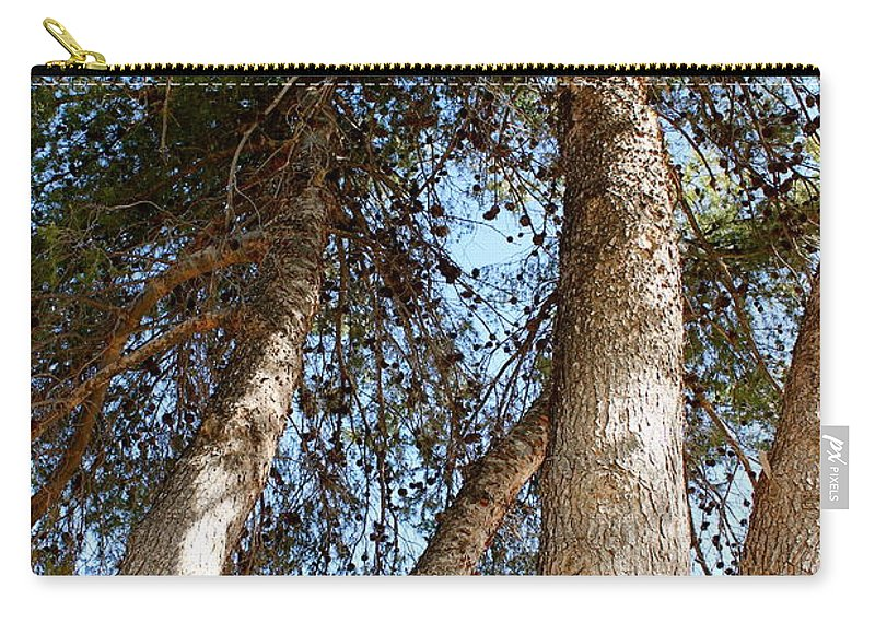 Pine Carry-all Pouch featuring the photograph Pine Trees by Kume Bryant
