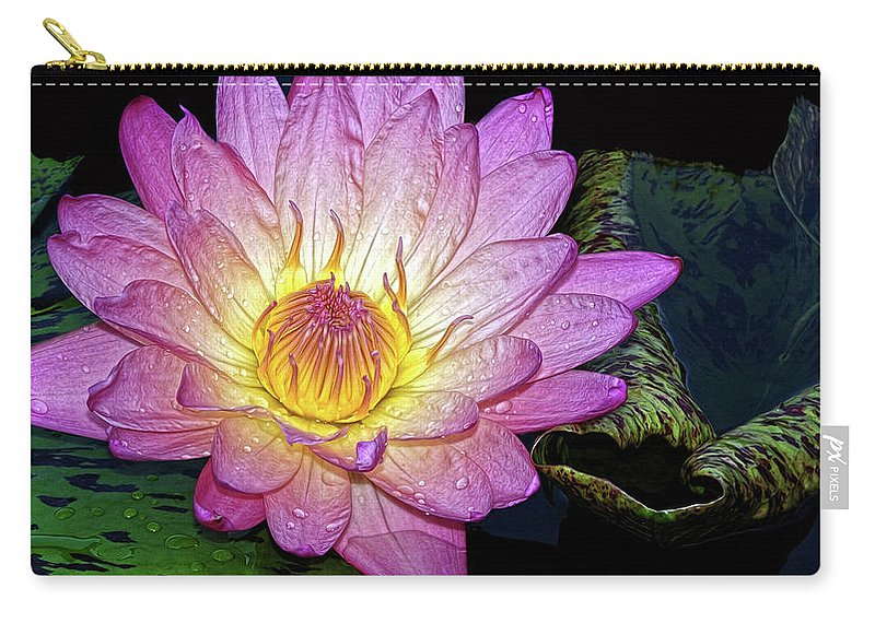 Waterlily Carry-all Pouch featuring the photograph Pink And Yellow Waterlily by Dave Mills