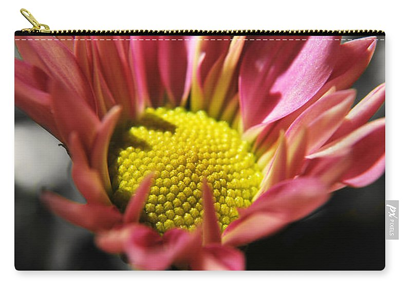 Yhun Suarez Carry-all Pouch featuring the photograph Pink Chrysanthemum by Yhun Suarez
