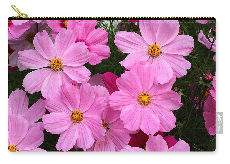 Doug Lloyd Carry-all Pouch featuring the photograph Pink Cosmos by Doug Lloyd