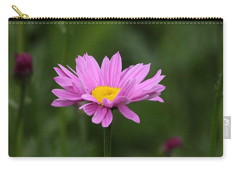 Doug Lloyd Carry-all Pouch featuring the photograph Pink Daisy by Doug Lloyd