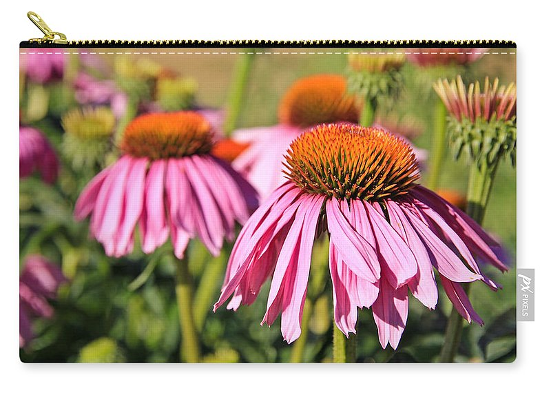 Coneflower Carry-all Pouch featuring the photograph Pink Pedals by Athena Mckinzie