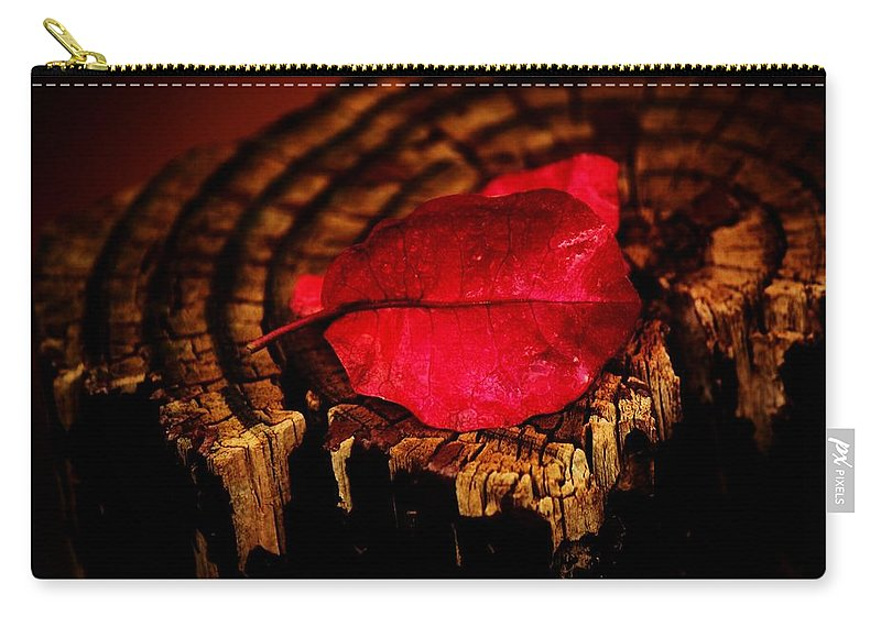 Petal Carry-all Pouch featuring the photograph Pink Petal by Jessica Shelton