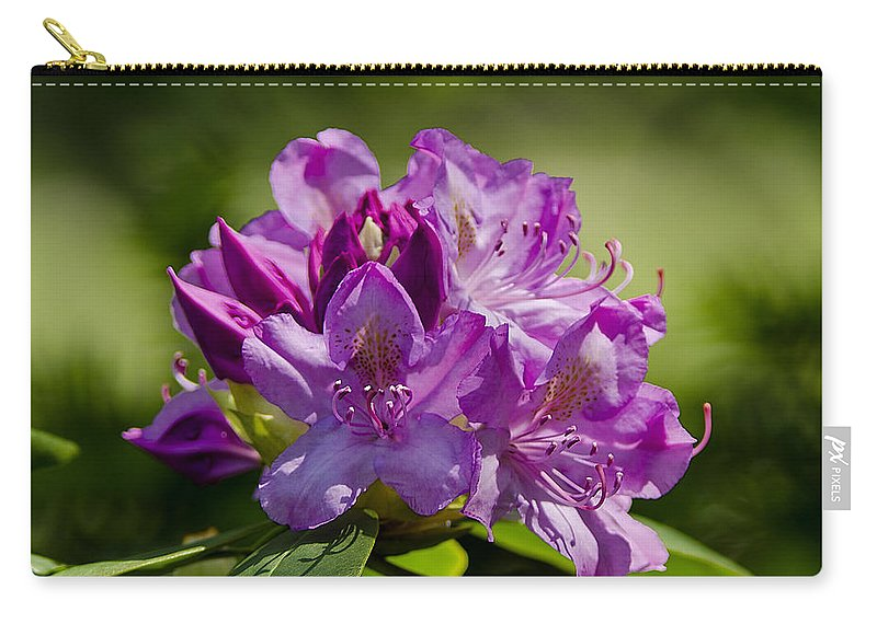 Usa Carry-all Pouch featuring the photograph Pink Petals On The Trail by LeeAnn McLaneGoetz McLaneGoetzStudioLLCcom