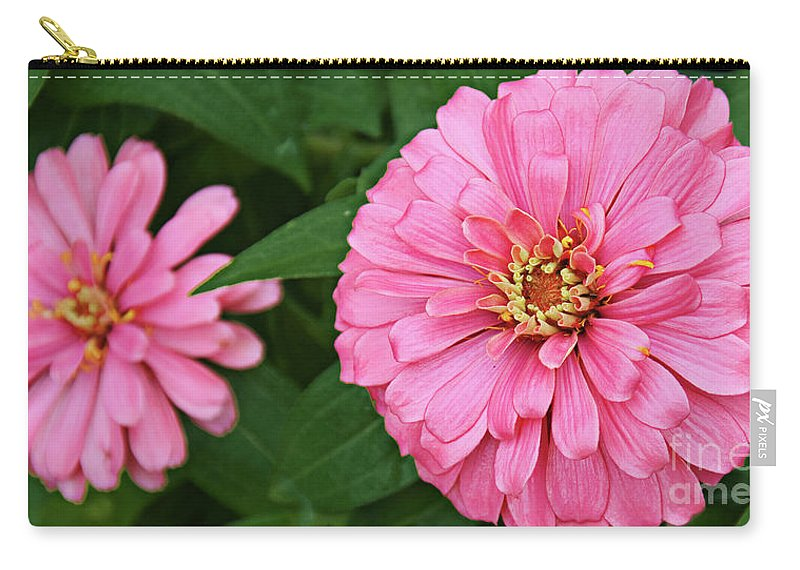Zinnia Carry-all Pouch featuring the photograph Pink Posy Pano by Andee Design
