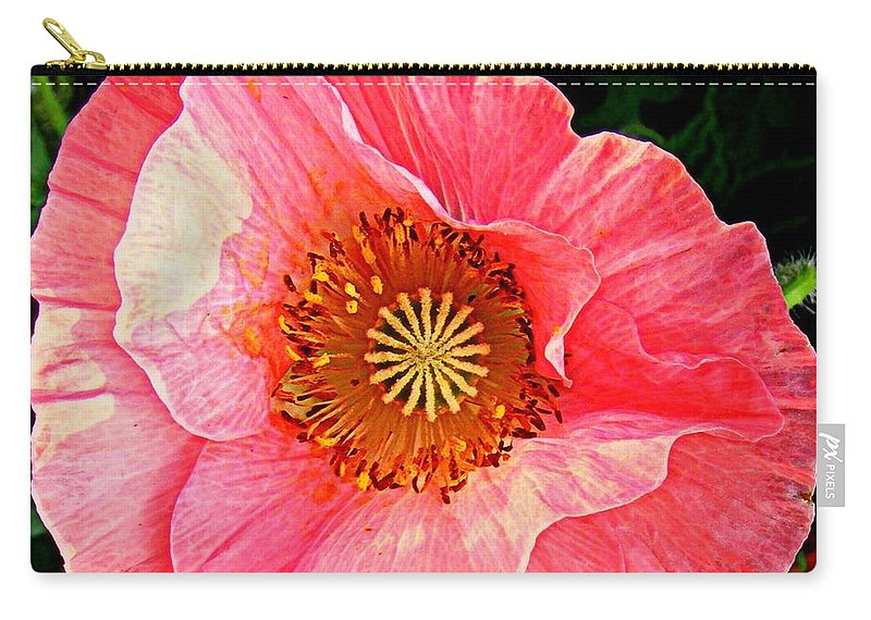Nature Carry-all Pouch featuring the photograph Pink Shirley by Chris Berry