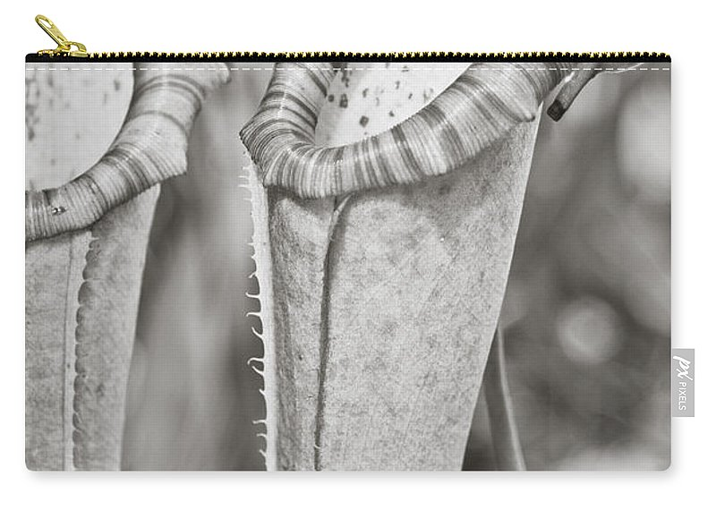 Flower Carry-all Pouch featuring the photograph Pixie Hammock by Trish Tritz