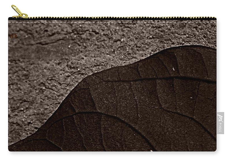 Nature Carry-all Pouch featuring the photograph Plant And Mineral by Chris Berry