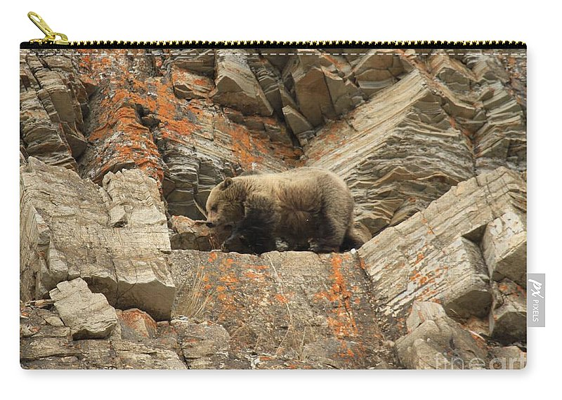 Grizzly Bear Carry-all Pouch featuring the photograph Playing Mountain Goat by Adam Jewell