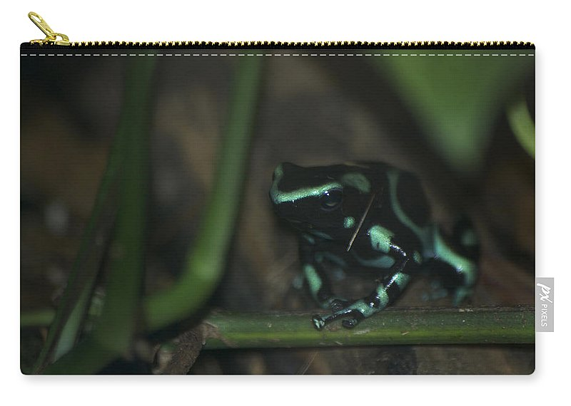 Animals Carry-all Pouch featuring the digital art Poisonous Green Frog 04 by Thomas Woolworth