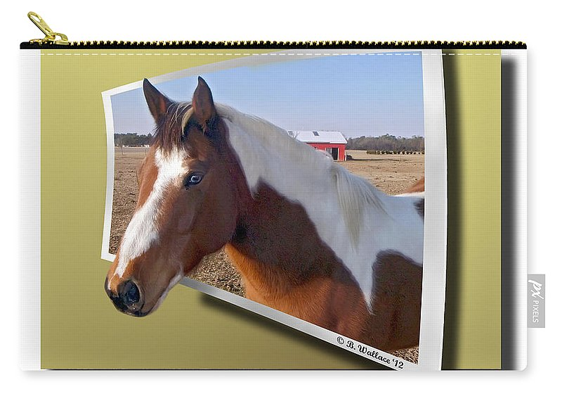 2d Carry-all Pouch featuring the photograph Pony Posing by Brian Wallace