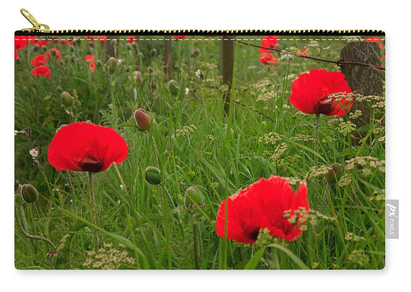 Poppies Carry-all Pouch featuring the photograph Poppies By The Roadside In Northumberland by Louise Heusinkveld