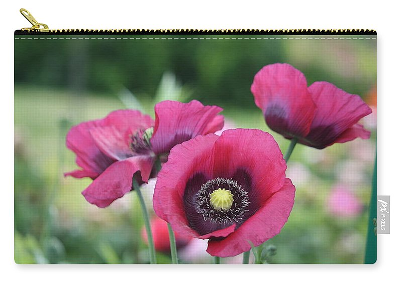 Poppy Carry-all Pouch featuring the photograph Poppies by Donna Walsh