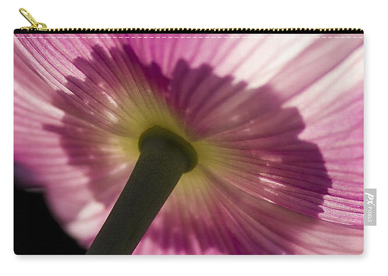 Poppy Carry-all Pouch featuring the photograph Poppy Detail 2 by Heiko Koehrer-Wagner