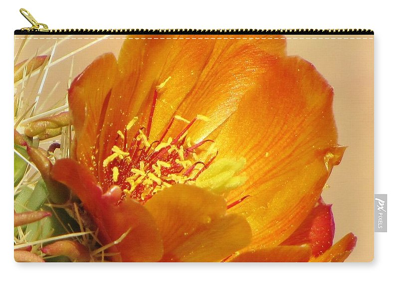 Cactus Flower Carry-all Pouch featuring the photograph Portrait Of A Cactus Flower by Michelle Cassella