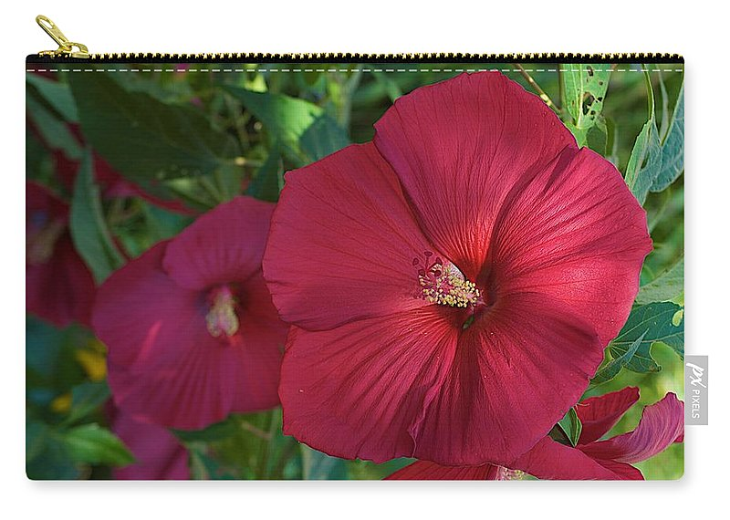 Hibiscus Carry-all Pouch featuring the photograph Potchen's Hibiscus by Joseph Yarbrough