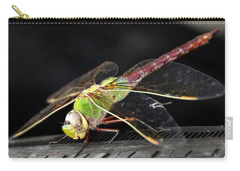 Fine Art Photography Carry-all Pouch featuring the photograph Praying Dragon by David Lee Thompson