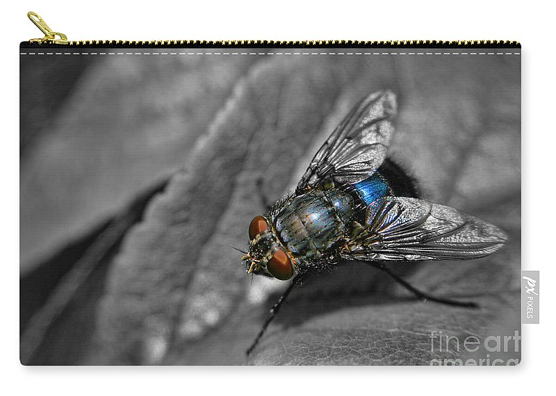 Yhun Suarez Carry-all Pouch featuring the photograph Pretty Fly For A Fly Guy by Yhun Suarez