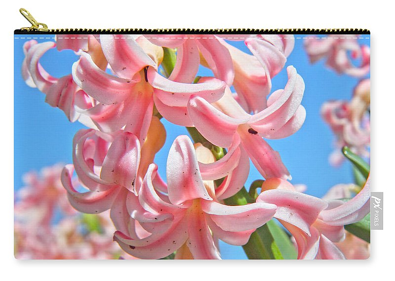 Hyacinths Carry-all Pouch featuring the photograph Pretty In Pink by Betsy Knapp
