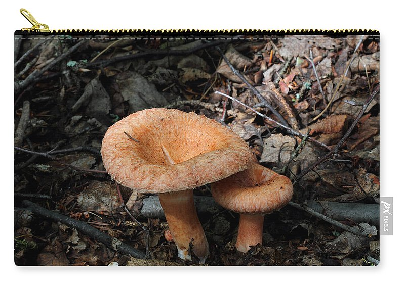 Doug Lloyd Carry-all Pouch featuring the photograph Pretty Mushrooms by Doug Lloyd