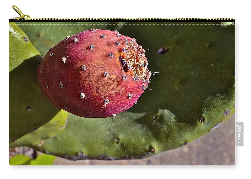 Prickly Pear Carry-all Pouch featuring the photograph Prickly Pear by Bill Owen