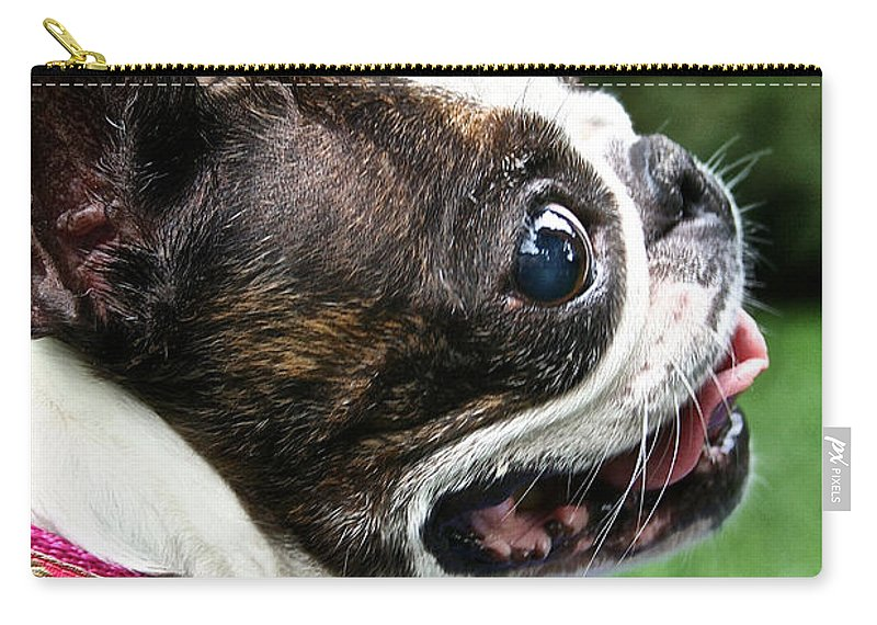 Animal Carry-all Pouch featuring the photograph Princess Outdoors by Susan Herber