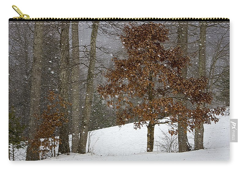 Landscape Carry-all Pouch featuring the photograph Promises To Keep by Ron Jones
