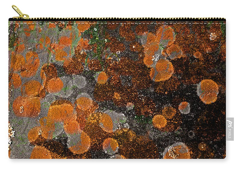 Pumpkin Carry-all Pouch featuring the photograph Pumpkin Abstract by John Stephens