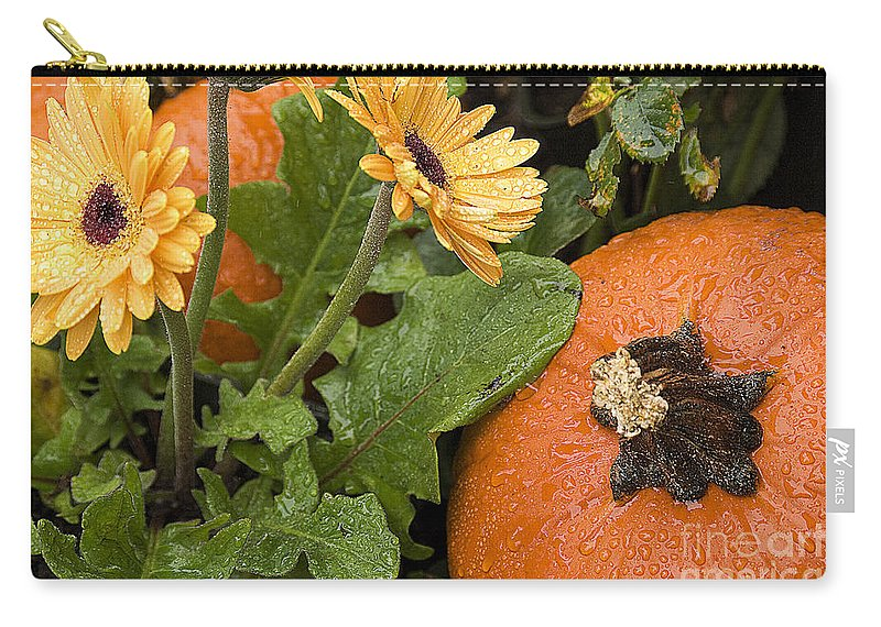 Fall Carry-all Pouch featuring the photograph Pumpkin And Gerberas by Jim And Emily Bush