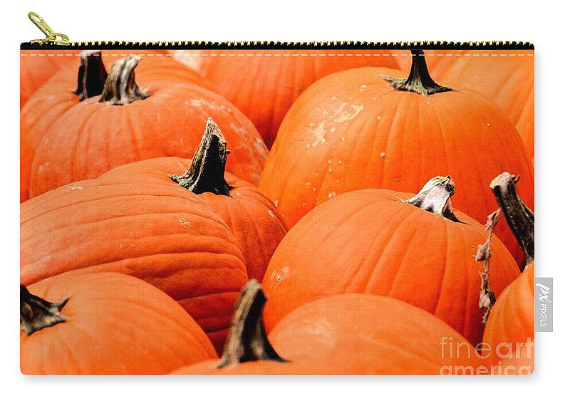Pumpkin Carry-all Pouch featuring the photograph Pumpkin Harvest by Maria Urso