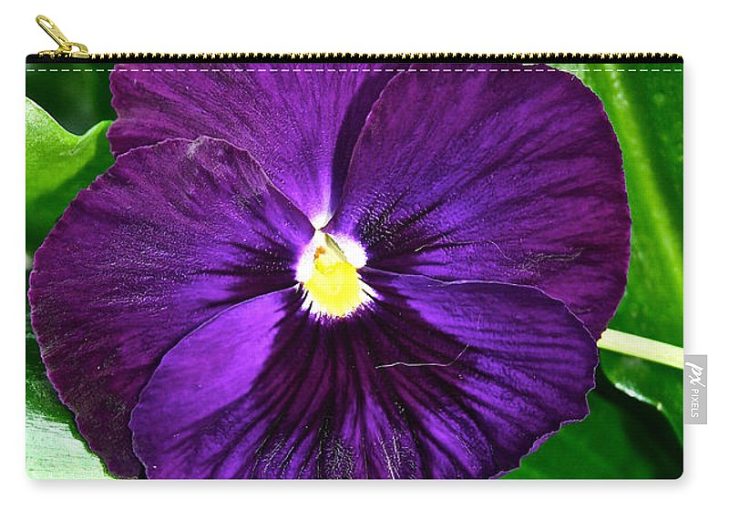 Tropical Plant Carry-all Pouch featuring the photograph Pure Purple by Susan Herber