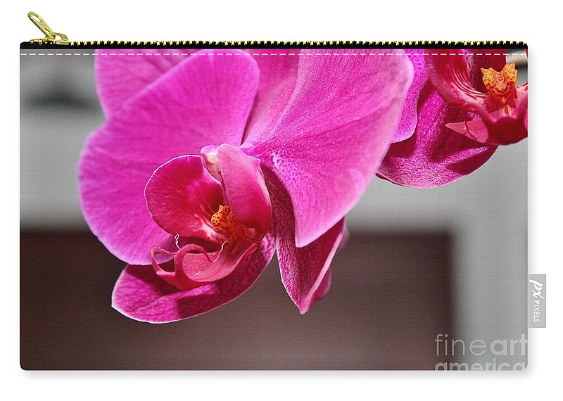 Flowers Carry-all Pouch featuring the photograph Purple Haze by Rene Triay Photography