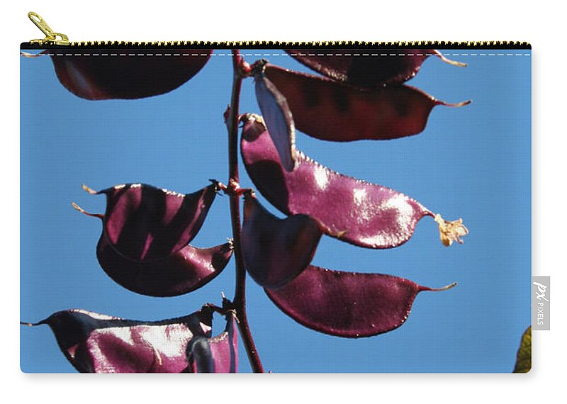Vegetable Carry-all Pouch featuring the photograph Purple Pods by Susan Herber