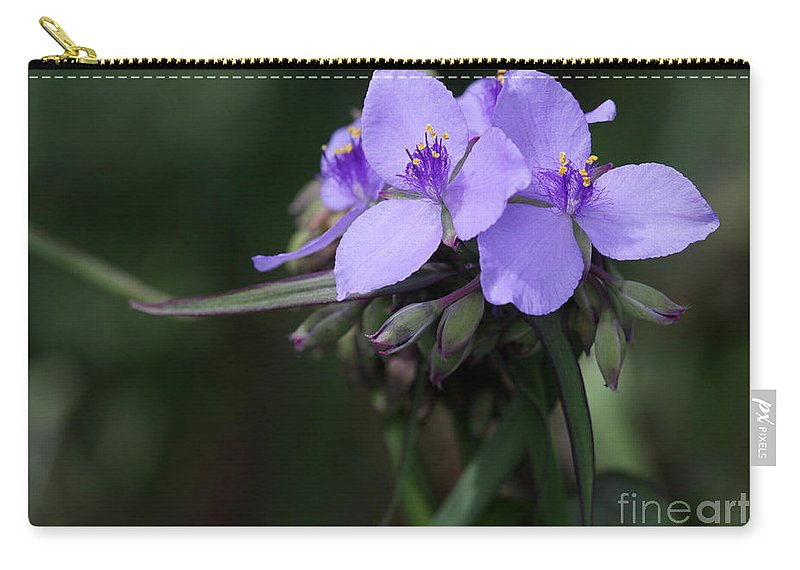 Macro Carry-all Pouch featuring the photograph Purple Spiderwort Flowers by Sabrina L Ryan