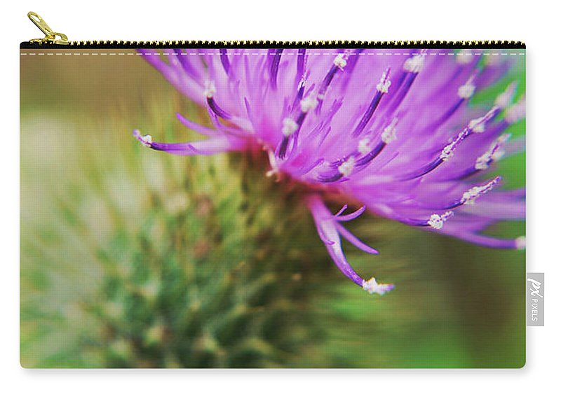 Yhun Suarez Carry-all Pouch featuring the photograph Purple Spikes by Yhun Suarez