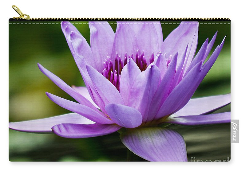 Purple Petals Carry-all Pouch featuring the photograph Purple Petals Water Lily by Carol F Austin